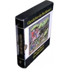 Das Jagdbuch des Mittelalters (Glanzlichter der Buchkunst)